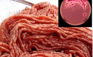 ET ÜRÜNLERİNDEKİ CİDDİ TEHLİKE: E.coli O157