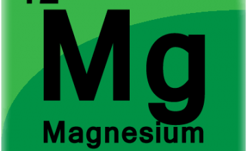 Magnezyum (MG) Analizi