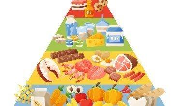 Gıdalarda Besin Değeri (Enerji) Hesaplaması